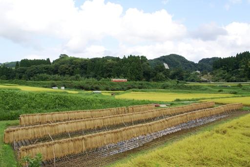 小湊鉄道08S-5.JPG