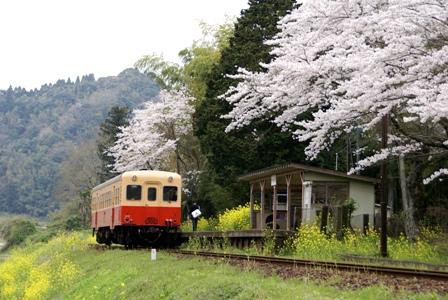 小湊鉄道2-1.JPG
