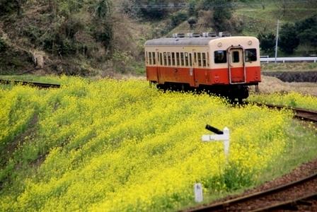 小湊鉄道2-2.JPG