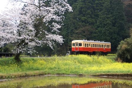 小湊鉄道2-3.JPG