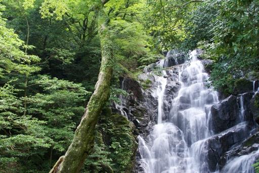 白糸滝1.JPG