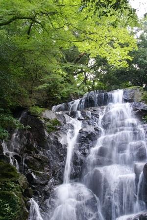 白糸滝2.JPG