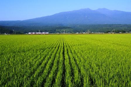 aki-yama3.JPG