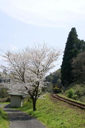 isumi100406-2.JPG