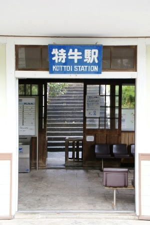 shimoji8.JPG
