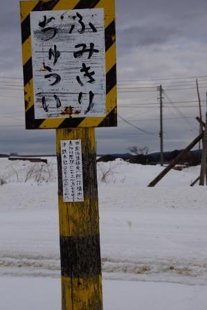 tsuga7 (299x448).jpg