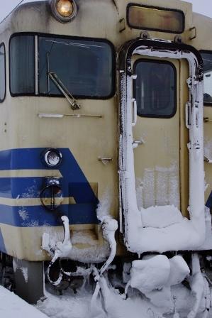 tsugarub1 (299x448).jpg